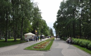 Парк Зеленогорск 207