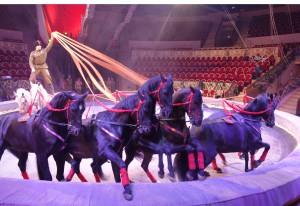 Цирк DSC01059